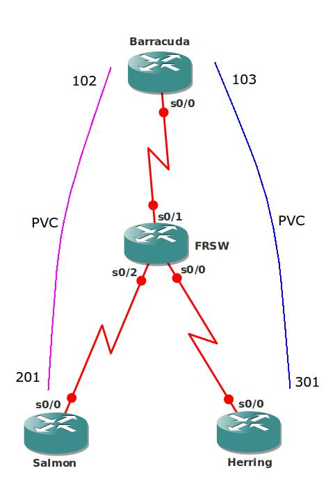 OSPF over Frame-Relay Broadcast Network Topology